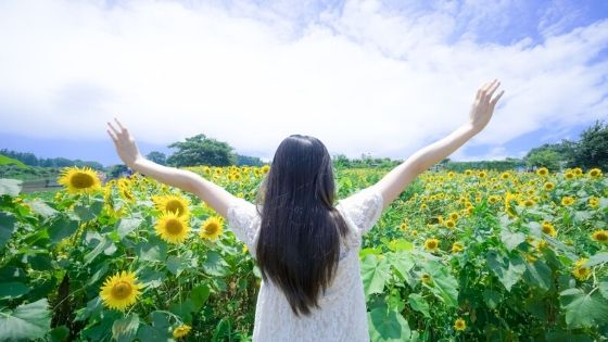 両手を挙げてひまわりと映る女性の写真